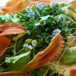 Salade à l'hémérocalle