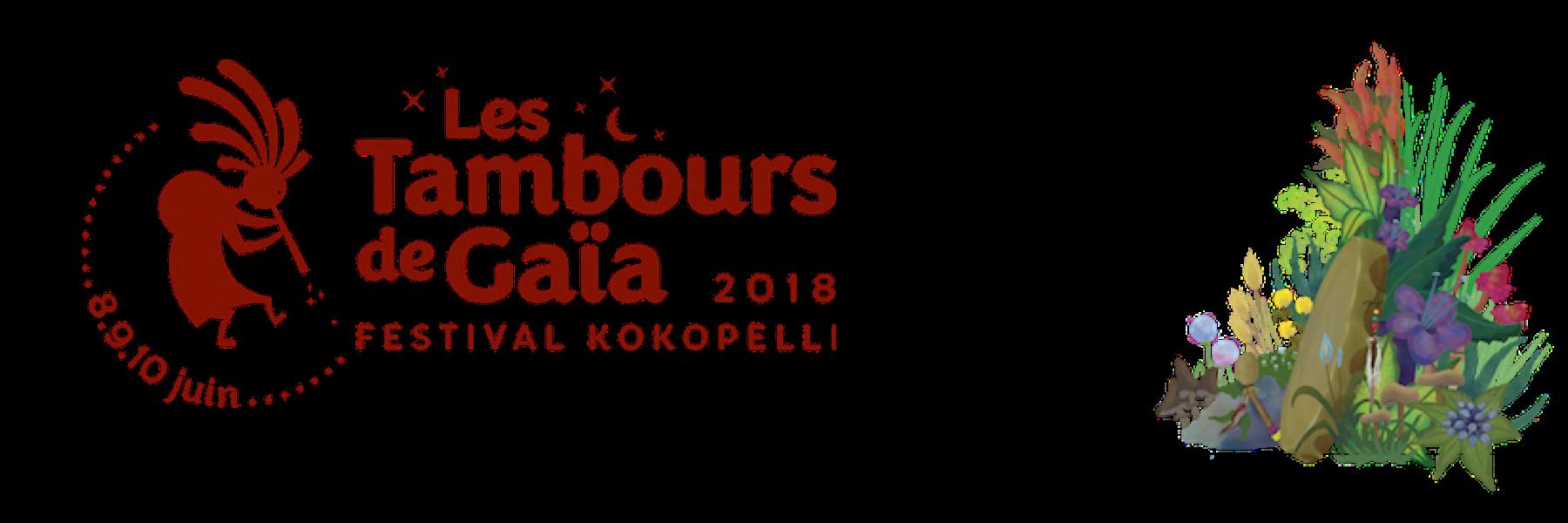 Festival Kokopelli